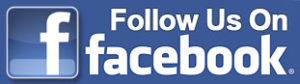 facebook follow us button